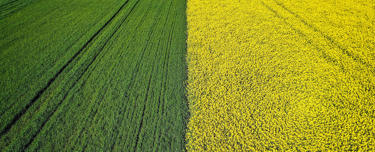 Claim R&D Tax Credits for Agricultural Sector